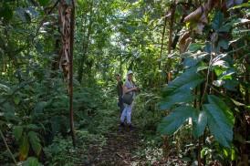 Hauseigener Trail