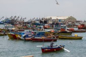 Arica fishing port