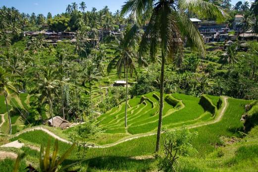 180412-26_Bali-120_Web